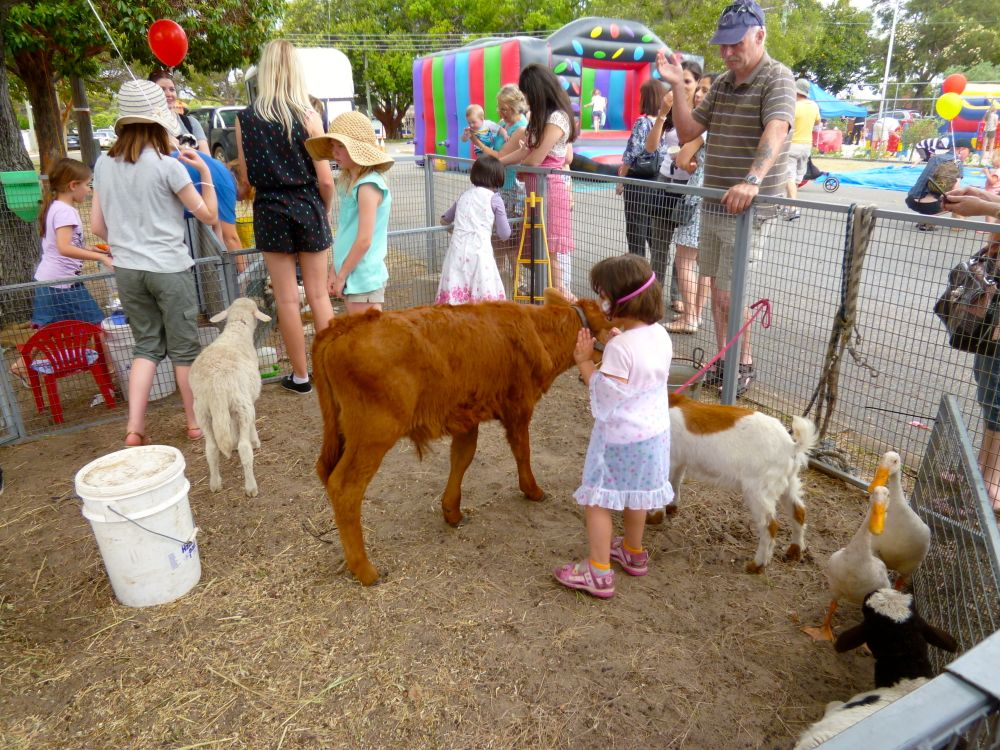 Mercedes Benz San Antonio >> List of Synonyms and Antonyms of the Word: petting zoo