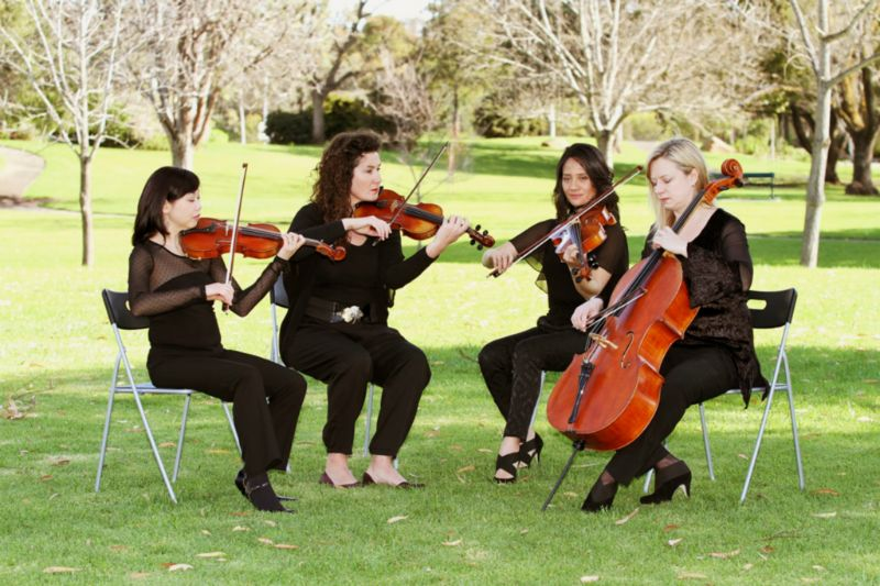 AmicusStrings-playing-veale-gardens