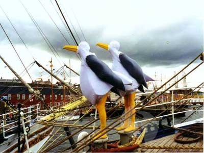 The-Seagulls-image2